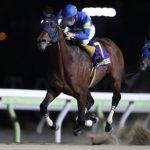 【大井・勝島王冠】3歳馬モジアナフレイバーが突き抜け重賞初V/地方競馬レース結果