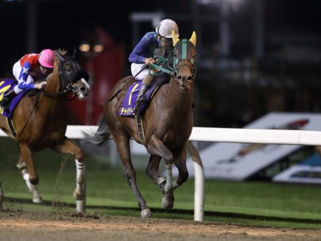 プロフェッショナルズ:競馬予想の悪徳商法に注 …